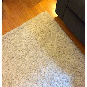 a white shag area rug
