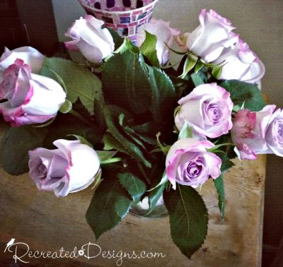 gorgeous puple and pink roses