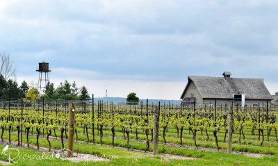 winery near Niagara-on-the-Lake in Spring
