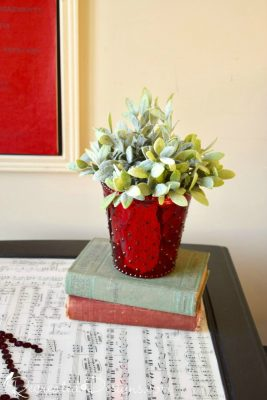 vintage books and a plant on a resin top table