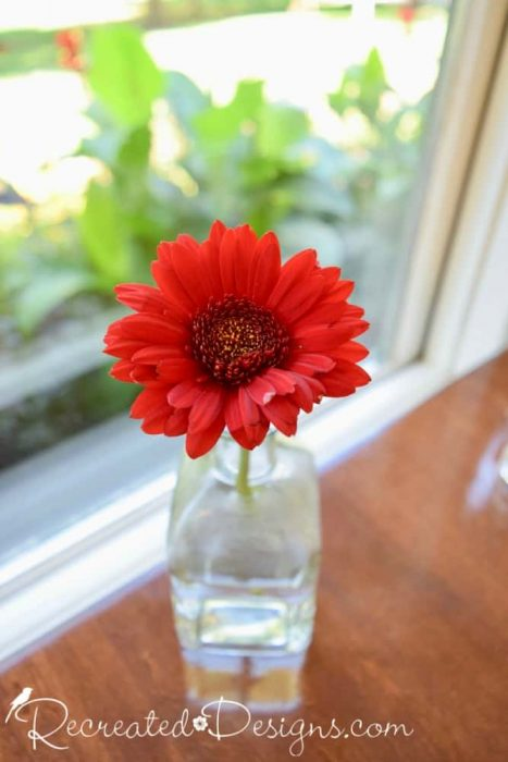 red Gerber daisy on the table in the main dining room of The Opinicon