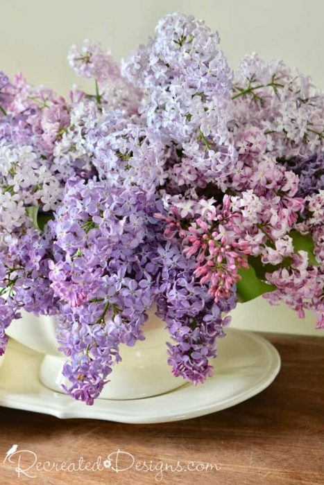 Ironstone tureen and lilacs