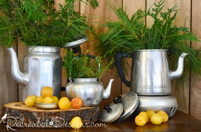 evergreens in vintage tin pots
