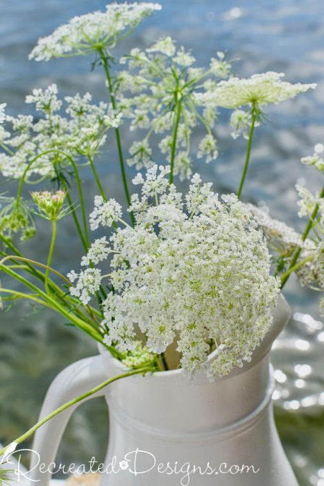 Queen Anne's Lace in Faux Ironstone