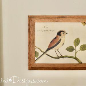 bird art in an old oak frame