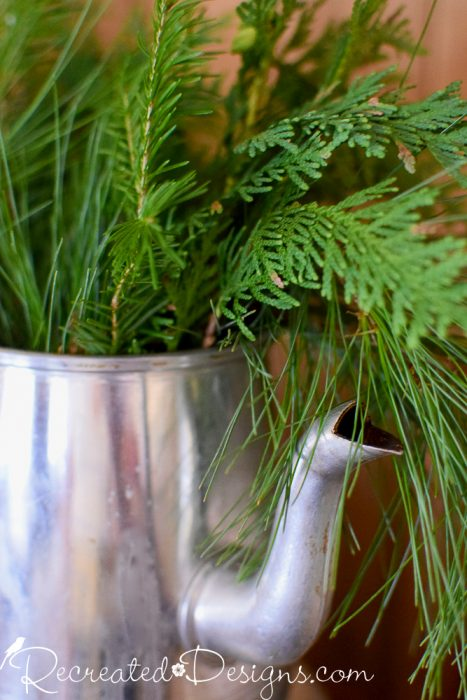 evergreens in a vintage coffee pot