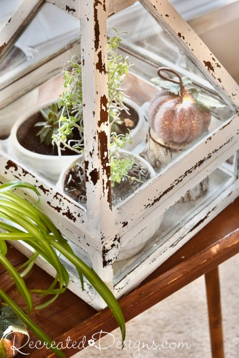 glass box and plants on a vintage table