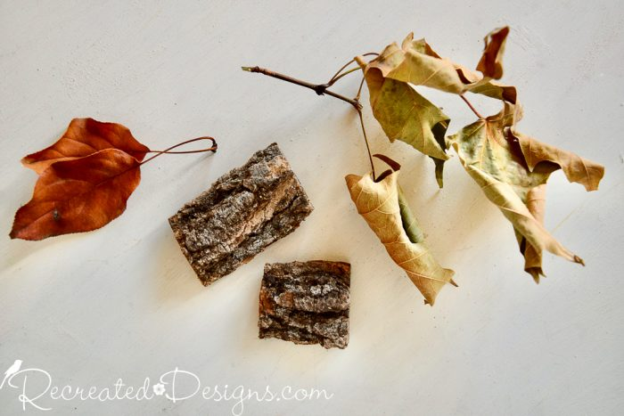 dried leaves and bark