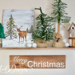 Winter pieces on a wood shelf
